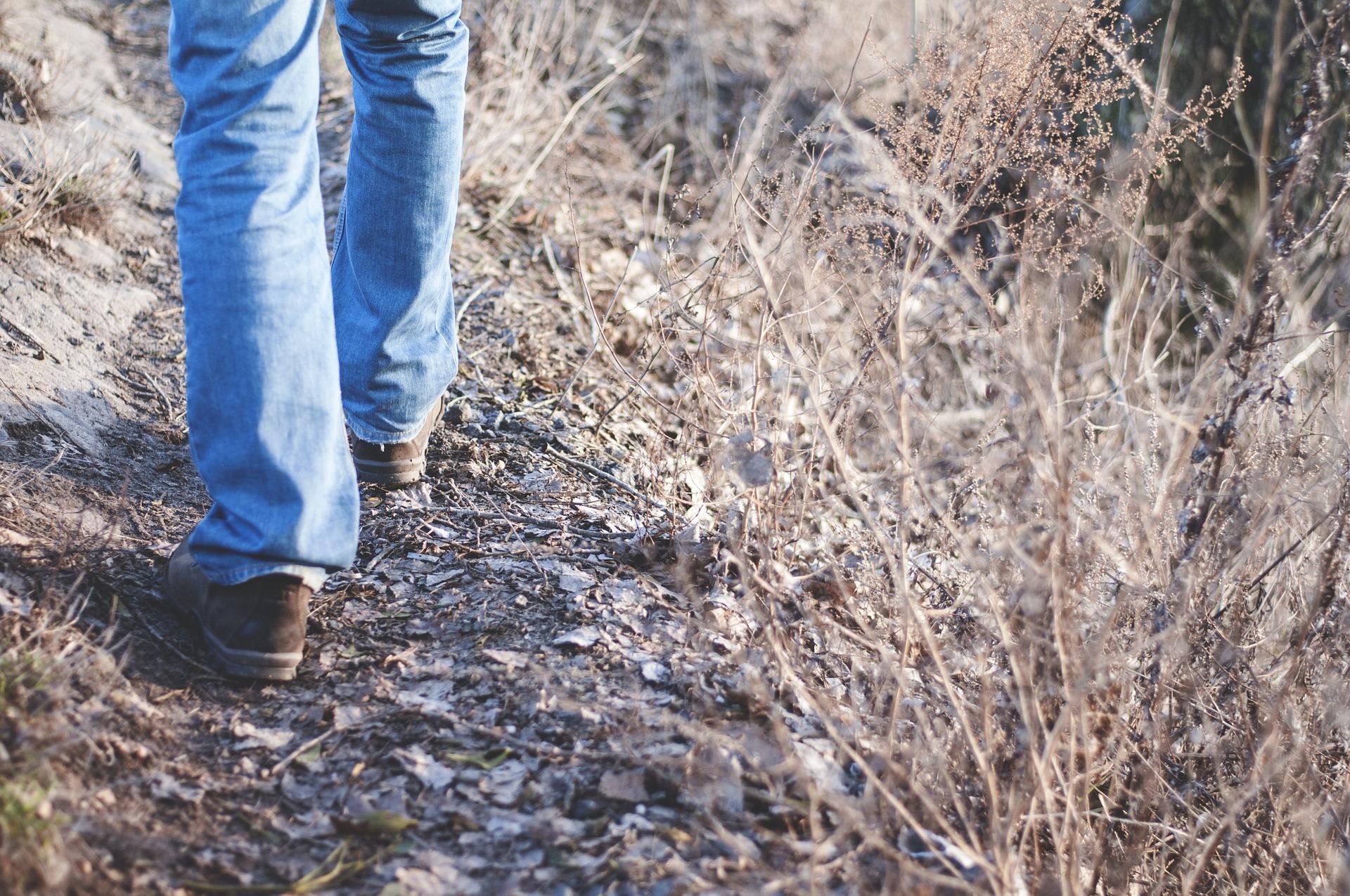 7799-hiking-1149985-1920.jpg